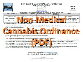 Non-Medical Cannabis Ordinance