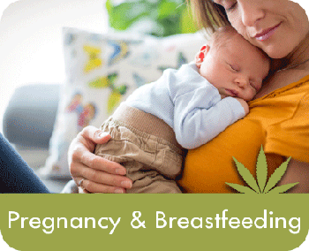 Cannabis: Pregnancy & Breastfeeding