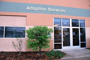 Adoption Services Building